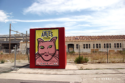 affiche rencontre photo arles