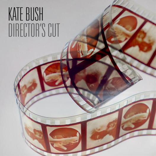 Director's Cut couverture album Kate Bush
