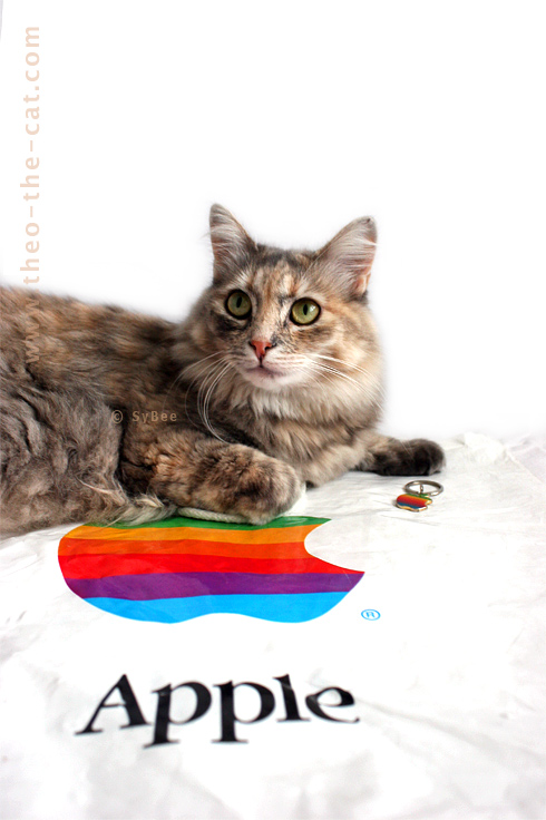 Lolly la minette et les goodies Apple