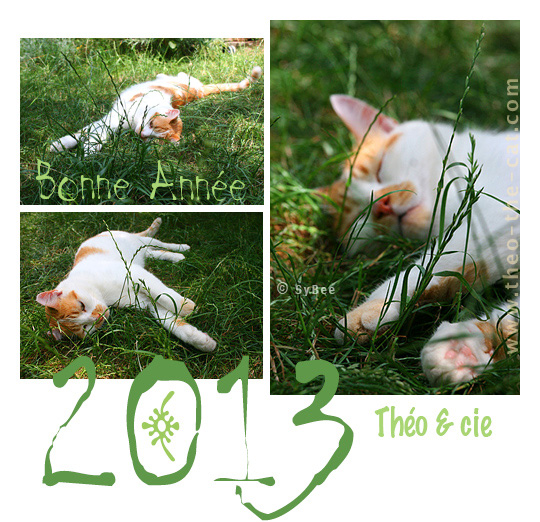 voeux2013-green-Theo.jpg