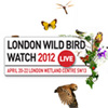 London Wild Bird Watch 20 avril 2012